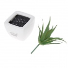 EZZE EZ-11-A Aloe Vera Deodorizing & Refreshing Activated Charcoal Diffuser - White + Green