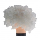 2014 World Cup Fans Explosion Hair Curly Party Wig - White