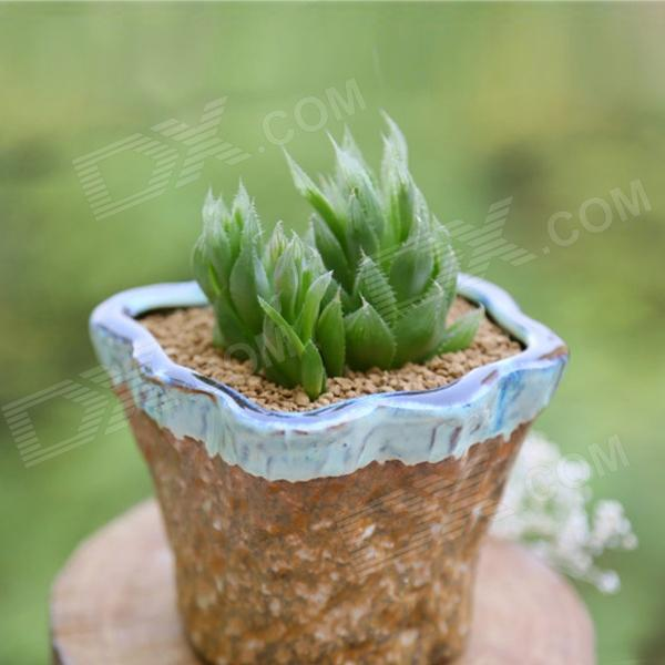 Fleshy Coarse Pottery Flowerpot w/ Bottom Hole - Tan