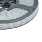 60W 12V 1800lm 600-SMD 5050 LED RGB étanche Double rangée décoration LED Strip (12V / 5m)