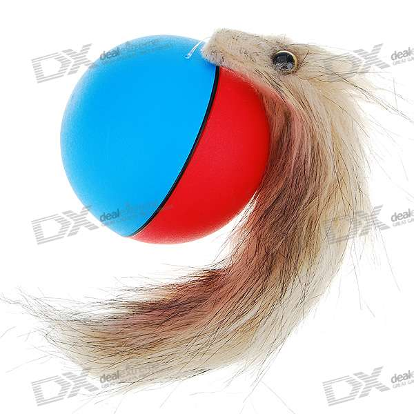 Playful Chasing and Rolling Beaver Ball (2*AA) playful chasing and rolling beaver ball 2 aa