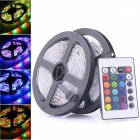 24W 300-SMD 3528 RGB LED Flexible Strip Light Lamp w/ Remote Controller (5m / 2 PCS)