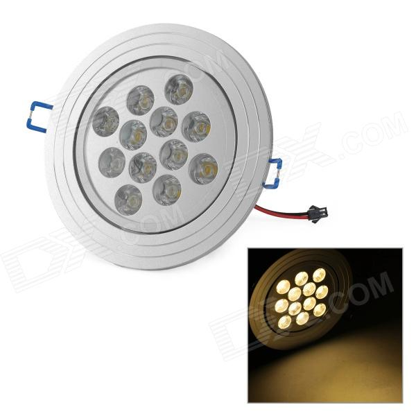 TDL-24012 12W 900LM 3000K 12-LED Warm White Light Ceiling Lamp - Silver (AC 85~265V)