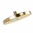 Y8Q1 Round Shaped 8'' Rainfall Shower Head - Antique Brass