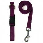 Doglemi DM40067 Adjustable Nylon Collar Leash for Pet Dog - Purple (Size S)
