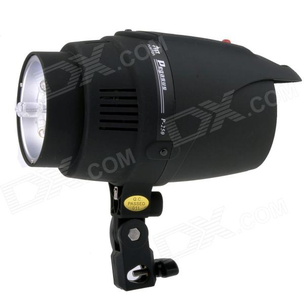FUSHI Tong Portable 250W IR Remote Control photographie lampe Flash / Strobe Light - noir