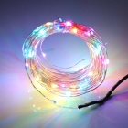 Waterproof IP65 3W 240lm RGB Color 100-LED Strip + 12V 1A US-Plug - Silver + Black (10m / 15cm)