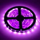 HML 36W 420nm 1300lm 300 x 3528 SMD LED Pink/Purple Light Strip - White + Yellow (12V / 5M)