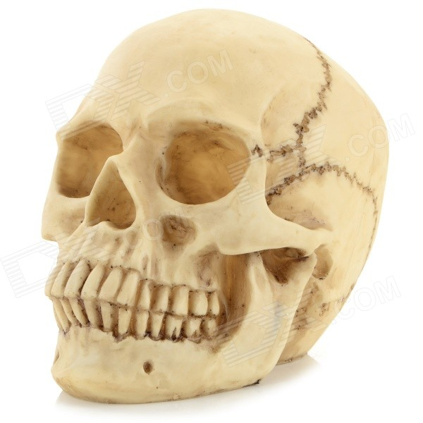 Halloween Decorative Resin Skull Head - Beige
