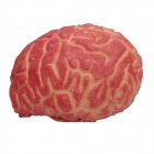 Horrible Brain Halloween Props Haunted House Decoration - Red