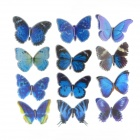 Double- layer Decoration Butterfly Sticker - Blue