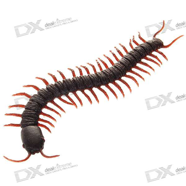 Centipede Shaped Fridge Magnet (Color Assorted)