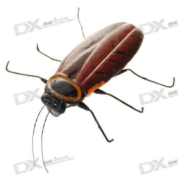 Cockroach Shaped Fridge Magnet (Color Assorted)