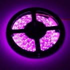 KINFIRE 72W 450nm 4500lm 300-SMD 5630 Purple Light Strip (DC12V / 5M)