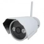 HOSAFE Wireless 720P 1.0MP Outdoor IP Camera w/ 2-IR-LED / Wi-Fi / Motion Detection / Email Alert
