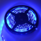 HML Wired 36W 465nm 1500lm Blue Light 300*3528 SMD Strip (12V / 5m)