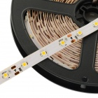24W 3528 SMD 3000K 500lm Warm White Strip (5M / DC 12V)