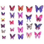 PVC 3D Simulation Butterfly Wall Stickers Art Decals - Deep Pink + Red + Multicolored (12 PCS)