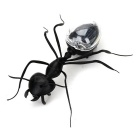 Educational Solar Powered Ant Toy for Kids - Black