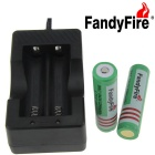 FandyFire  EU Plug Battery Charger + 3.7V 2000mAh 18650 Protected Battery