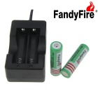 FandyFire  EU Plug Battery Charger + 3.7V 2000mAh 2 x 18650 Batteries