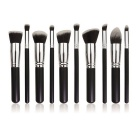 Professional 10-In-1 Cosmetic Tool Makeup Brushes Set - Black + Silver