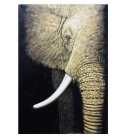 Frameless Canvas Art Elephant Oil Painting Set (2Pcs/ Set)