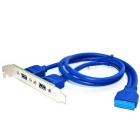 USB 3.0 19-Pin to Dual Port A Female Cable - Blue (0.5m)