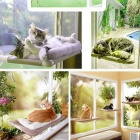 Pets Cat Hammock w/ Suction Cups - White + Transparent + Multi-Colored