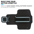 Double Buckle Sports Armband Bag Case + Screen Film + Earphone for IPHONE 6 Plus / 6S Plus - Silver
