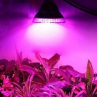 E27 12W PAR38 Red + Blue Light Plants Growth Lamp (AC 85~265V)
