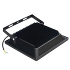 Jiawen 50W IP66 Cold White LED Floodlight - Black (AC 220V)