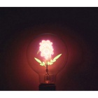 YouOKLight E27 3W Sunflower NEON Warm White Filament Bulb (AC 220V)