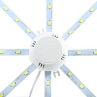 16W 1450lm 32-SMD 5730 Cold White Light Source for Ceiling Lamp