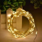 WLXY 3W Warm White 50-LED Decorative String Lamp (5m / DC 12V / 3PCS)