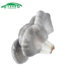 CARKING Fake Vegetable Artificial Oyster Decoración de setas - Blanco + Gris
