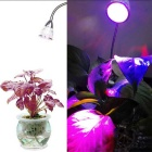 YouOKLight YK6007 5W 360 'Collo flessibile Pianta Grow Light (spine degli Stati Uniti)