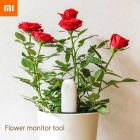 Original Xiaomi Flower Monitor Tool - White (International Version)