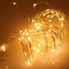 YouOKLight 33FT/10m Warm White Waterproof LED Copper Wire String Light