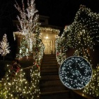 1.8W Cold White 100-LED Mg-Saline Water Xmas LED Light String (39ft)