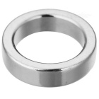 JEDX 20mm Round Shaped Magnetic NdFeB Magnet - Silver