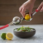 Hand Operated Stainless Steel Lemon Squeezer