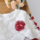 Stitching Lace Peng Peng Baby Dress for 3-4 Years Old Kids - Wine Red