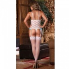 Full Lace Passion Open Lucrative Lingerie (including Stockings)