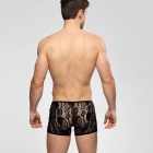 Sexy Perspective Lace Jacquard Flat Angle Men's Underwear - Black (XL)