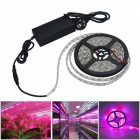 JIAWEN IP65 imperméable à l'eau 30W 5050 SMD LED Strip, Plant Growth Light (5m)