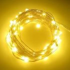 SZFC 10m 100-LED imperméable en argent fil chaud blanc LED String Light