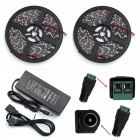 Buy ZHAOYAO IP65 Waterproof 140W DC 12V 10m 3528SMD-1200LEDs Warm White LED Strip Light 10A US Plug Charger + Connector