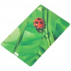 Compact Name Card-Stil USB 2.0 Flash / Jump Drive - Ladybird (4GB)