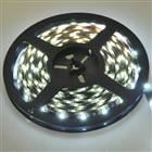 30W 192x5050 SMD LED White Light Strip (4.8-Meter/DC 12V)